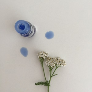 yarrow flower and blue essential oil