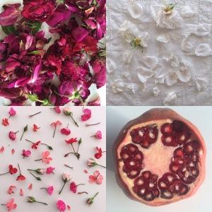 rose pomegranate geranium